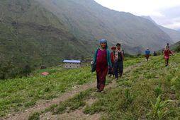 Frá Nepal.