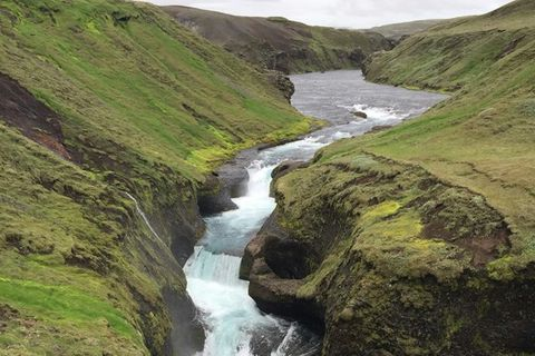 Heiða Guðný Ásgeirsdóttir