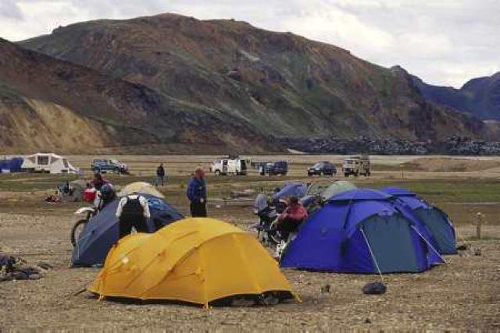 Um þriðjungur erlendra ferðamanna sem til landsins koma heimsækja Landmannalaugar.