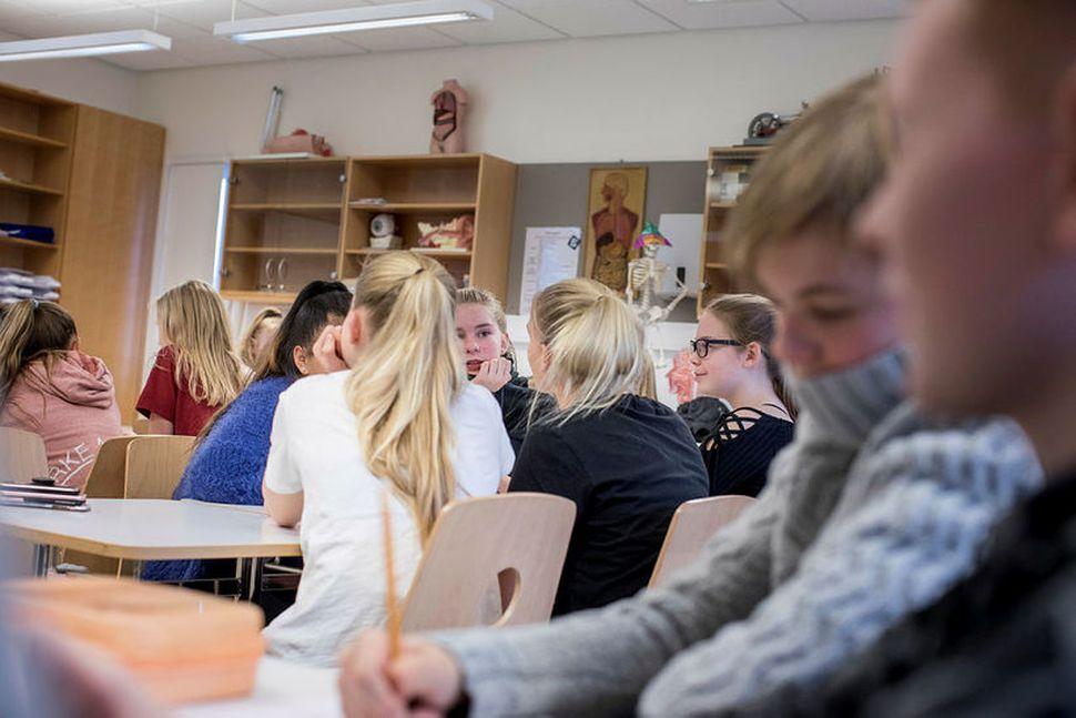 Dósent við Menntavísindasvið Háskóla Íslands segir ekki nógu vel gert ...