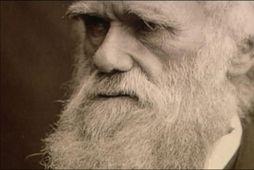 Charles Darwin hlaut á fimmta þúsund atkvæða þó látinn væri fyrir 130 árum. .