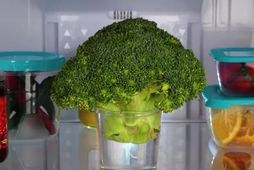 Við elskum brokkolí!
