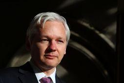 Datacell og Sunshine Press Production, rekstrarfélag Wikileaks, munu krefjast þess að erlendir sérfræðingar komi að ...