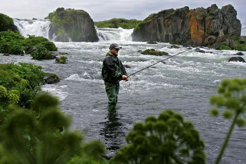 Laxá í Aðaldal is often referred to as the queen of Icelandic rivers for salmon fishing.