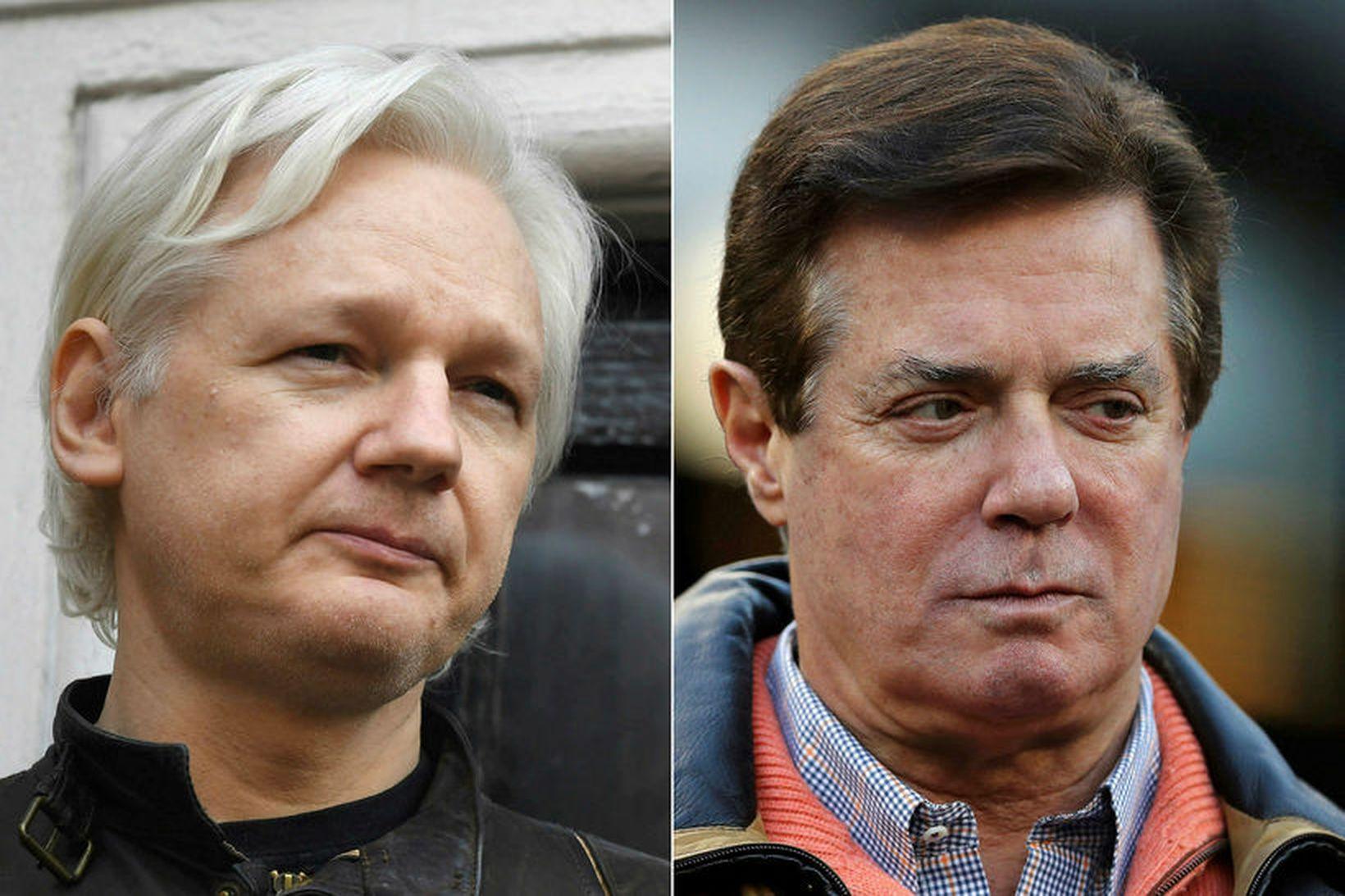 Julian Assange, stofnandi WikiLeaks, og Paul Manafort, fyrrverandi kosningastjóri Donald …
