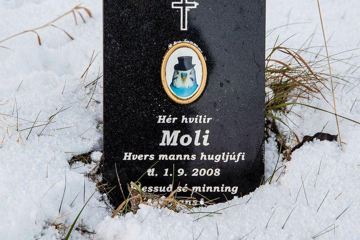 Allmarga legsteina og krossa má finna í grafreitnum.