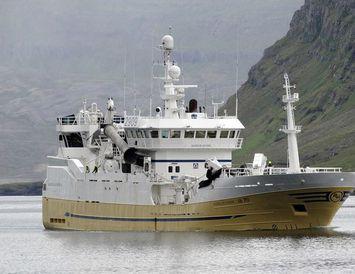 Bjarni Ólafsson AK landaði á Seyðisfirði í morgun.