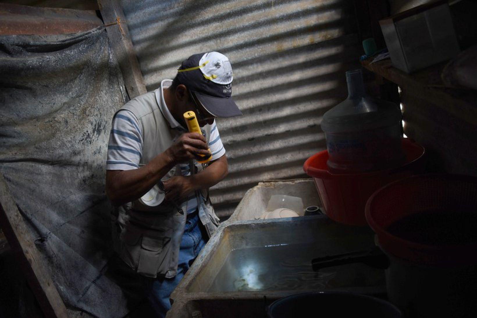 Yfirvöld í Brasilíu hafa m.a. brugðist við Zika vírusnum með …