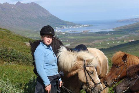 Skorrahestar, riding tours