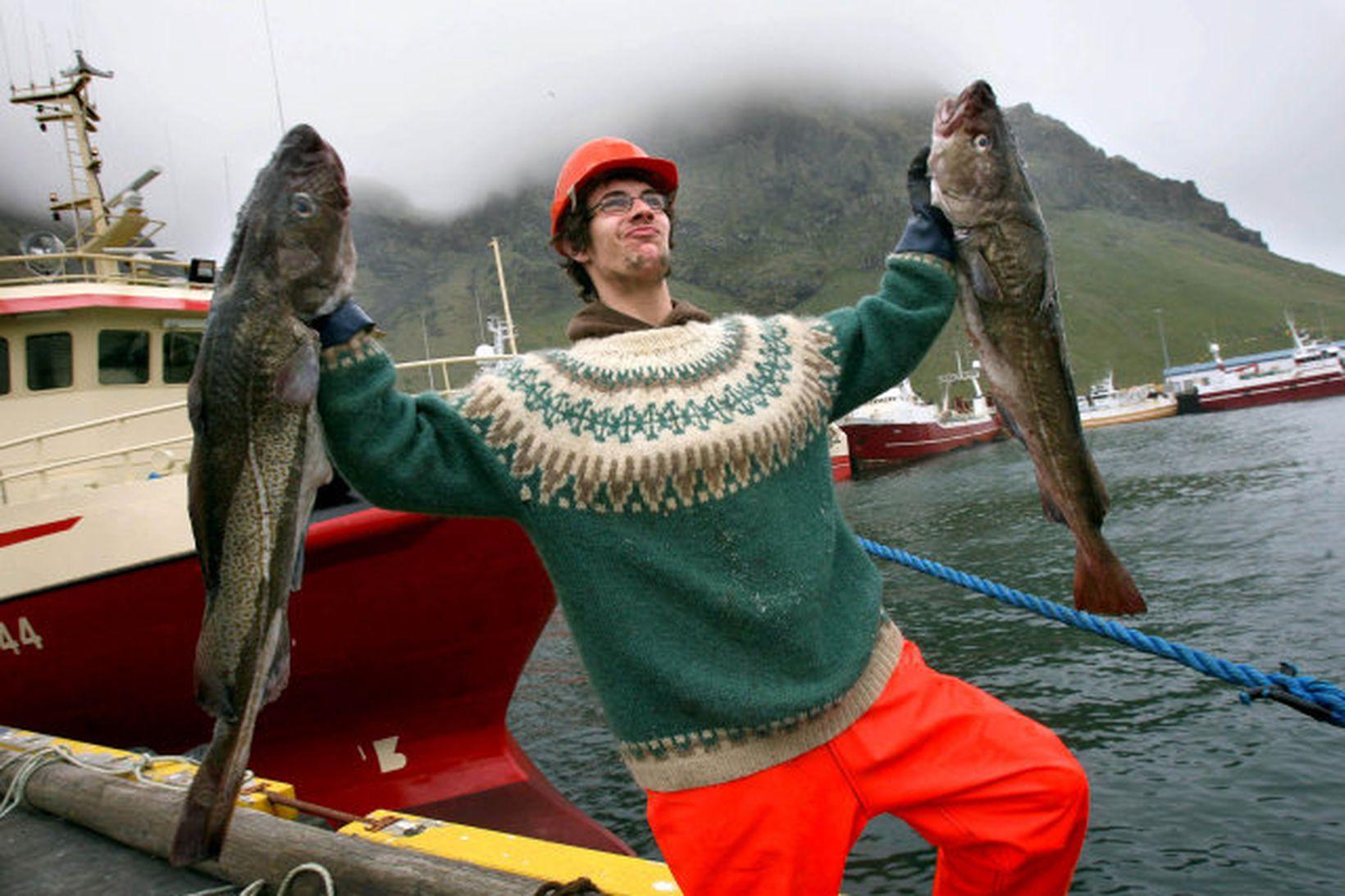 Sigurður Jón Sigurðsson, sjómaður í Vestmannaeyjum, með væna fiska.