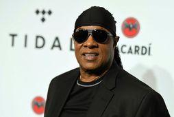 Stevie Wonder er kominn með nóg af Bandaríkjunum.
