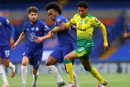 Jamal Lewis gæti farið til Liverpool.