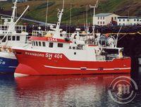 Svanborg SH 404
