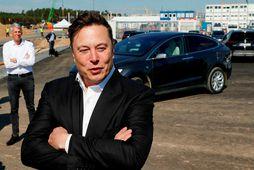Elon Musk hefur óvænt orðin andlit bitcoin-svindla á Internetinu.