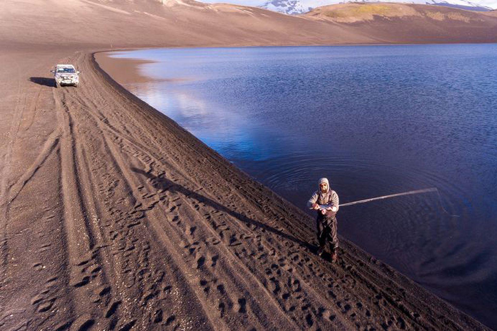 Vargurinn kastar á Sauðafellsvatn. Einungis er veitt á flugu í …