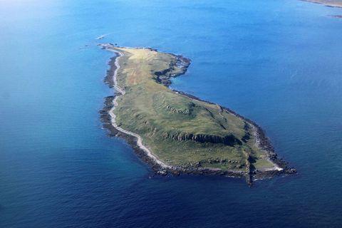 Vigur island.