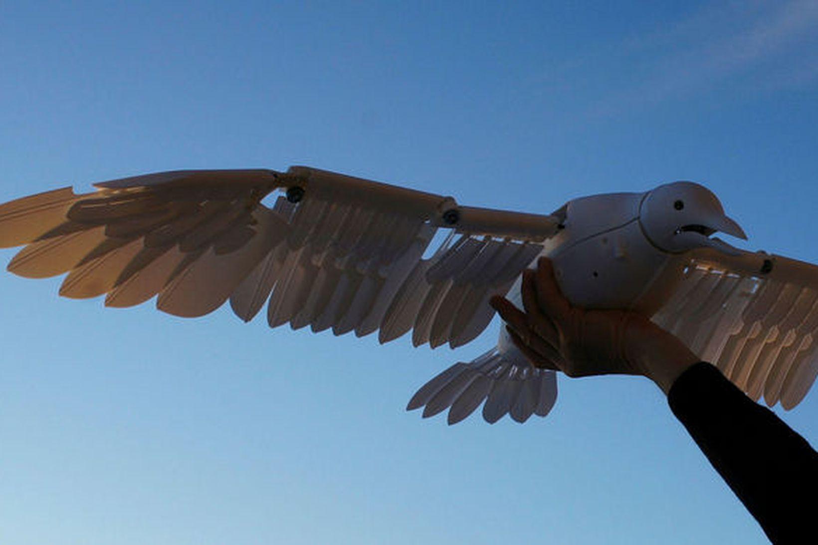 Þessi dróni flýgur með vængjaslætti líkt og fuglar.