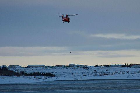 Search for Ríkharður in 2018.