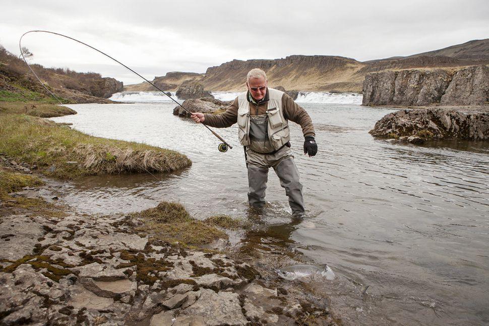 Einar Sigfússon landar laxi í Norðurá. Þetta var sumar sem ...