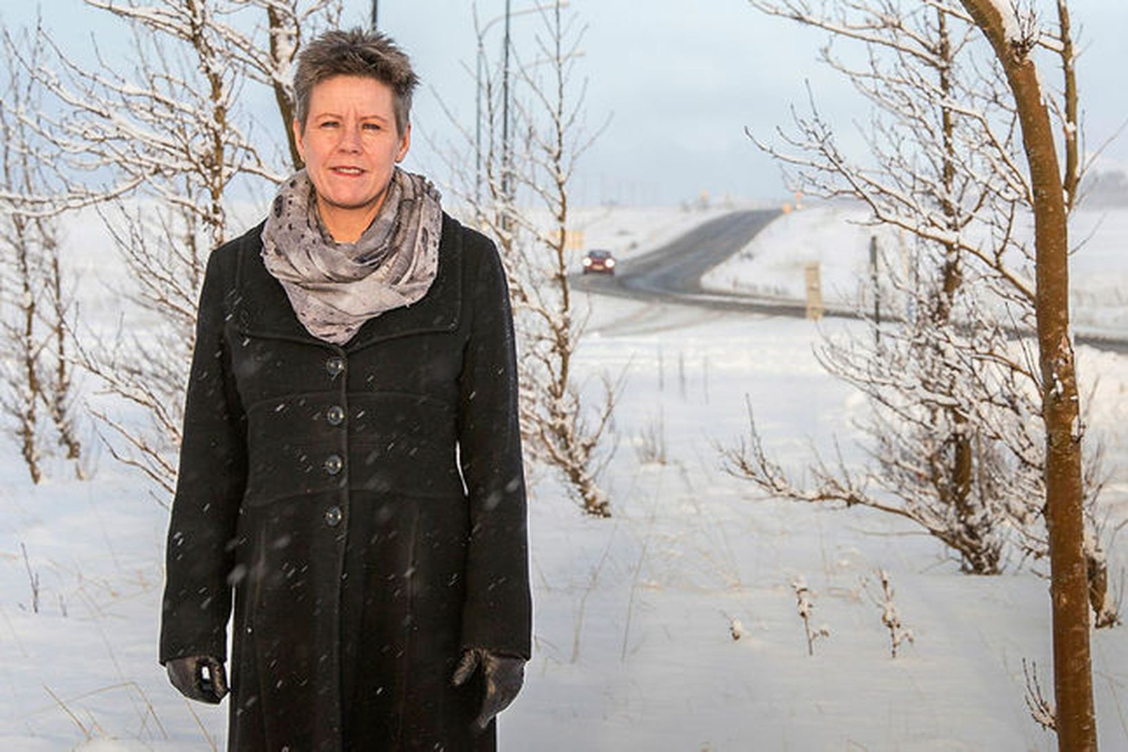 Bjarnheiður Hallsdóttir.
