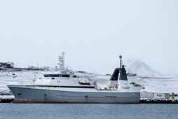 Grænlenski togarinn Polar Nanoq í Hafnarfjarðarhöfn.