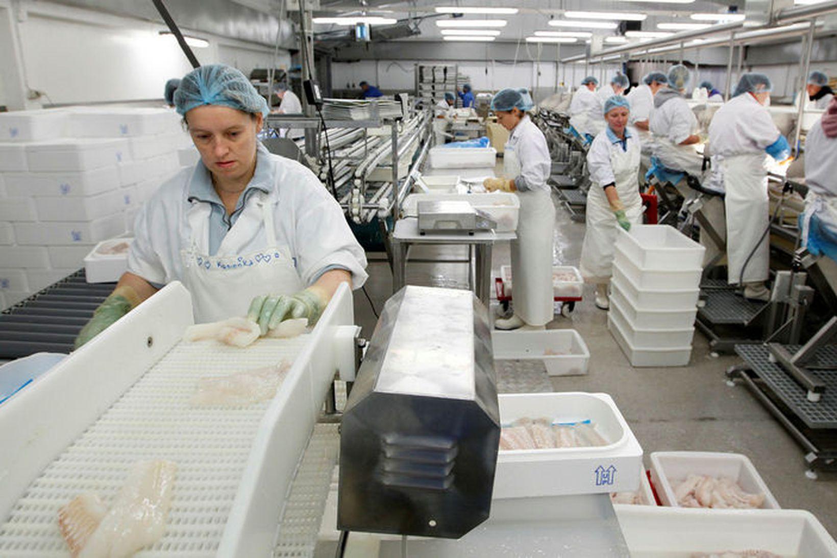 Störfum í fiskvinnslu fækkaði um 3% milli áranna 2017 og …