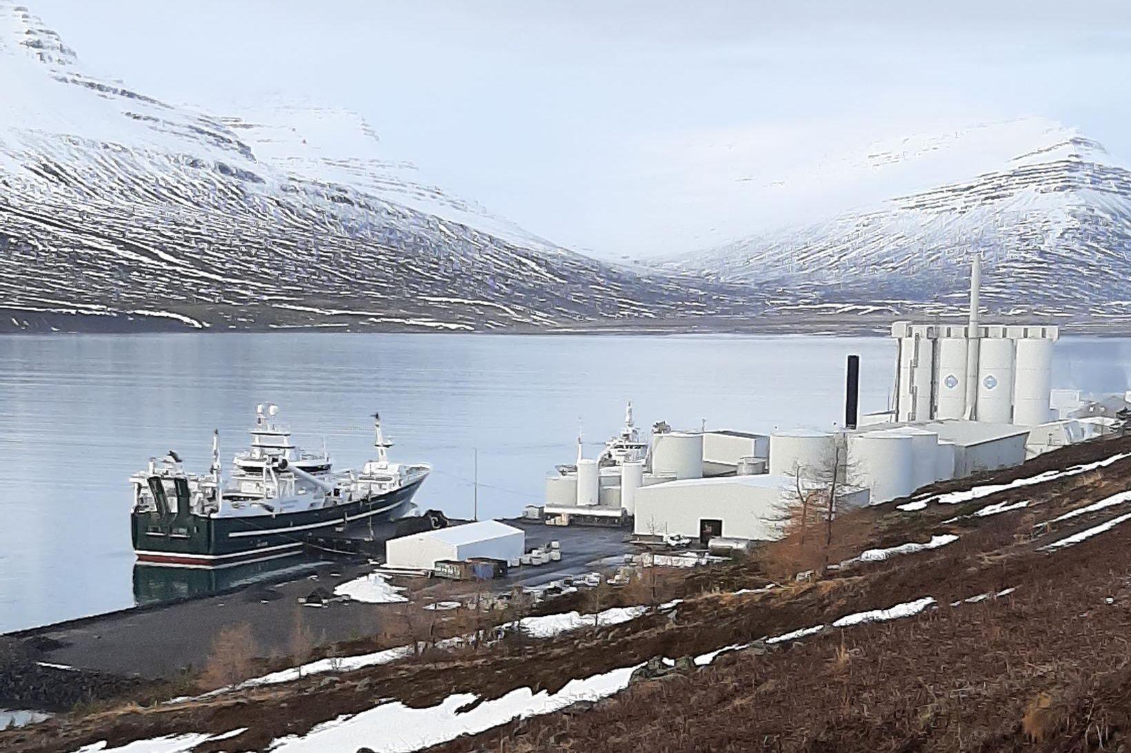 Norska skipið Kings Bay í höfn á Fáskrúðsfirði.