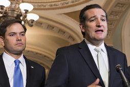 Öldungadeildarþingmennirnir Ted Cruz og Marco Rubio eru á lista kínverskra stjórnvalda.