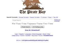 Erfitt getur verið að nálgast efni á Pirate Bay eftir bannið.