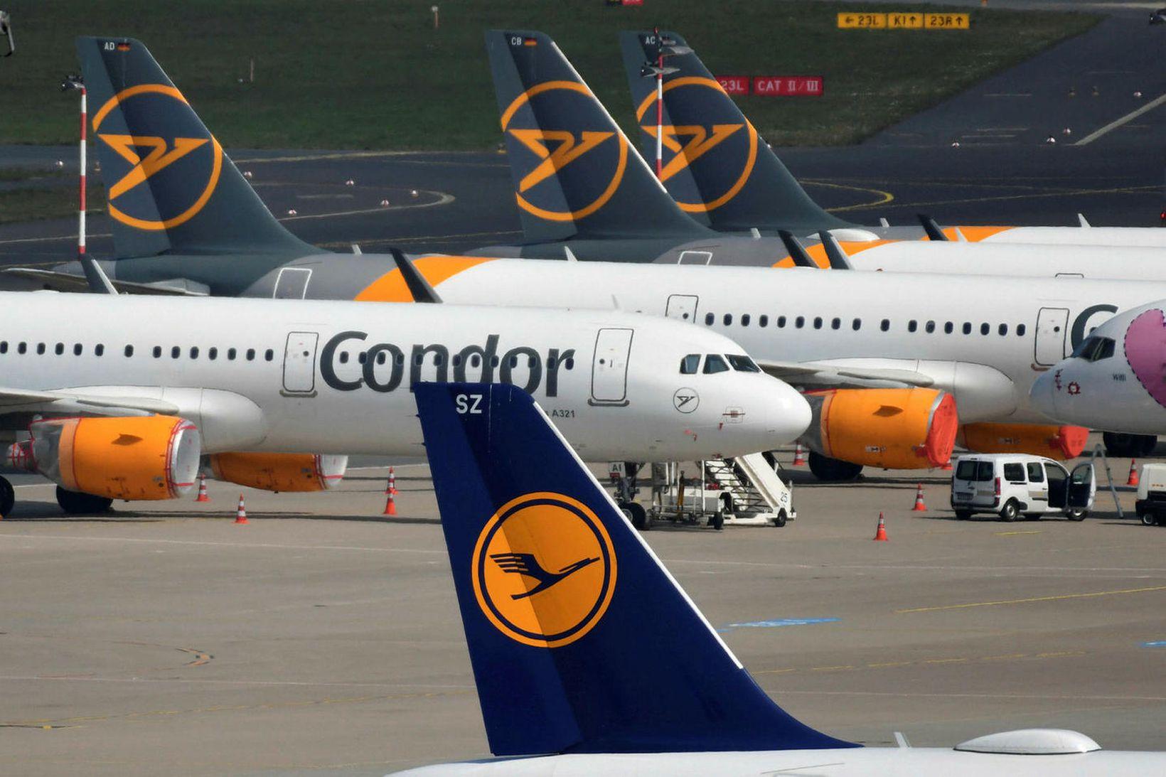 Þotur Lufthansa á flugvellinum í Dusseldorf.