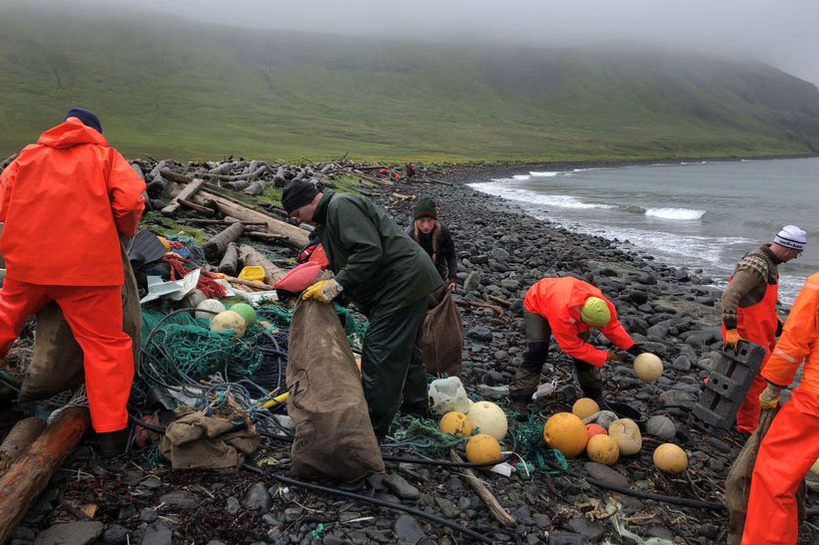 Hópurinn að störfum í fjörunni í Bolungavík í fyrra. Þar …