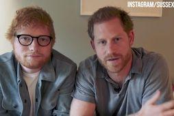 Ed Sheeran og Harry prins.
