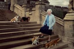 Drottningin er mikil hundakona, en hún ræktaði Corgi hunda um árabil.