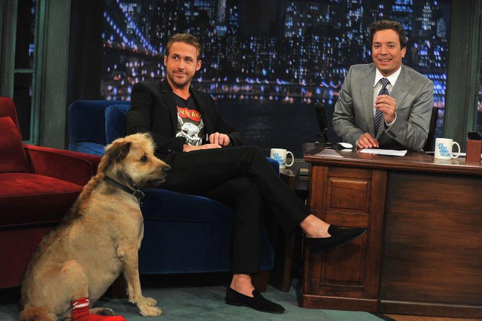 Ryan Gosling ásamt hundinum sínum George í þættinum Late Night með Jimmy Fallon í júlí …