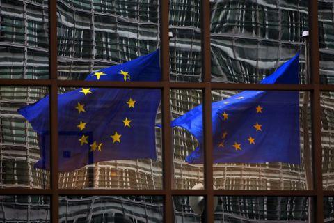 Will the EU reduce customs on Icelandic imports?