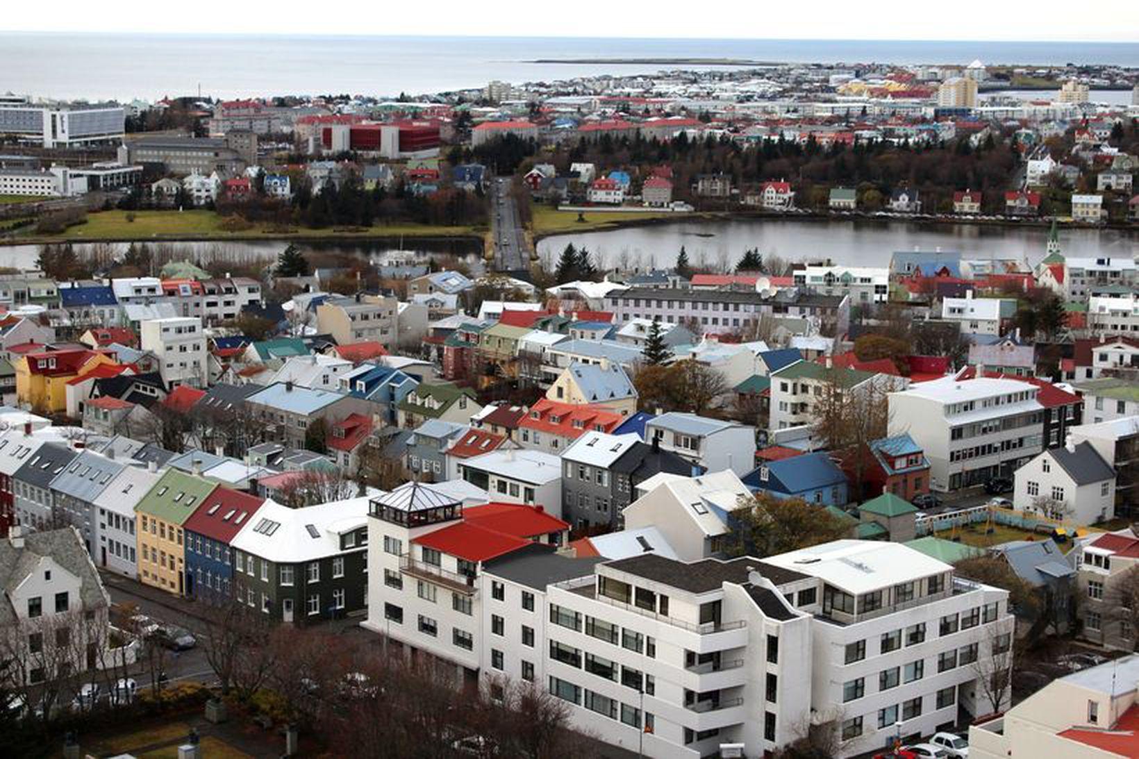 Greiðslur til lækkunar höfuðstóls fóru í að greiða niður vexti.