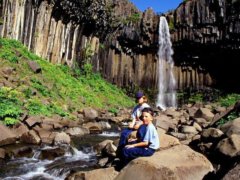 Svartifoss waterfall is in the south part of the national parkþ