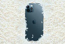 Apple varar við því að setja Iphone í hrísgrjón.