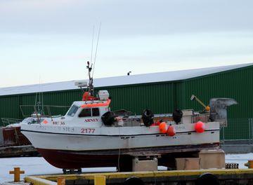 Arney SH-162