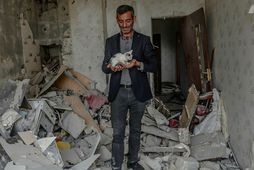 Yasin Budakov, 40 ára íbúi í Nagorno-Karabakh héraði heldur á kettlingi sem hann fann á …