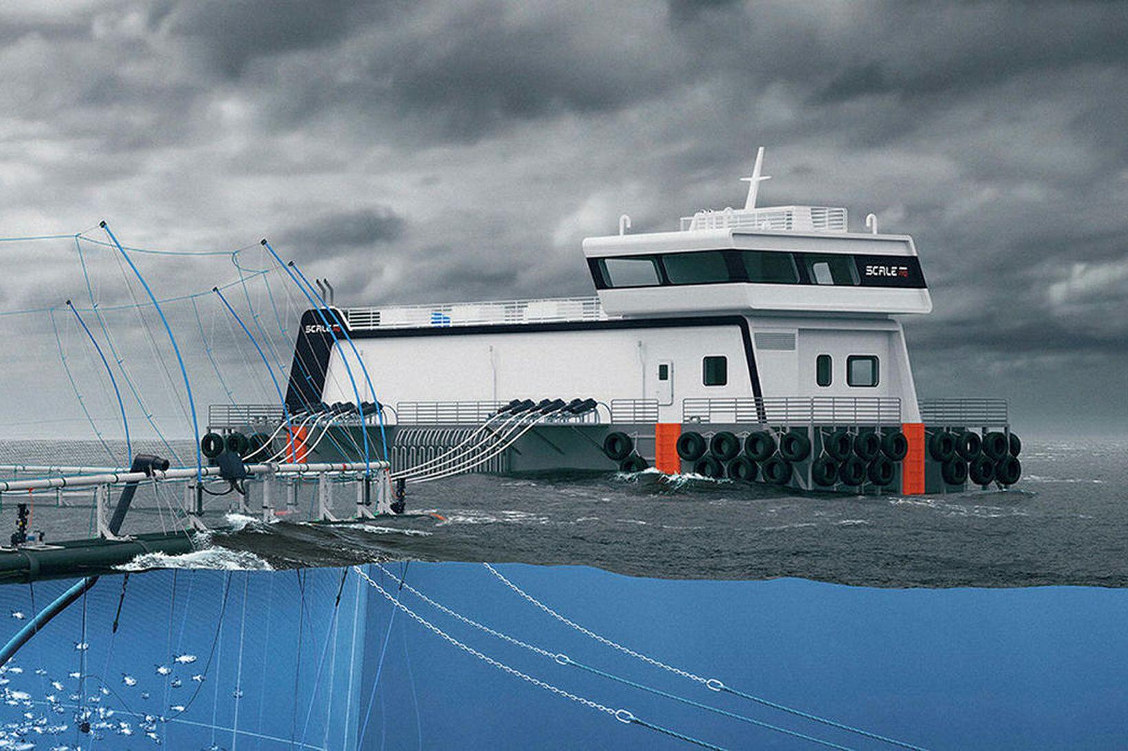 Tengiltvinn Nova 600-fóðurprammi er 30 metra langur og 12 m …