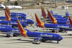 Kyrrsettar Boeing 737 MAX-flugvélar í eigu Southwest-flugfélagsins í Bandaríkjunum.