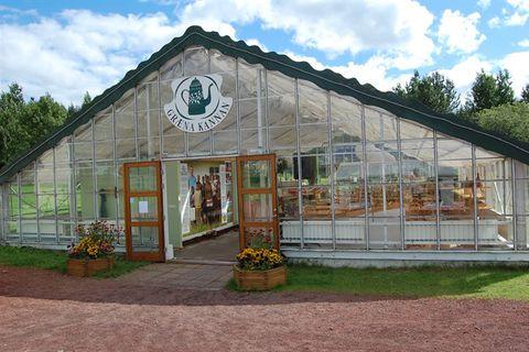 Græna kannan Organic Café