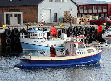 Barðstrendingur BA-033
