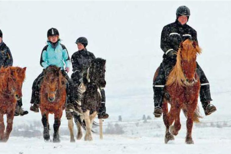 The summer snow is not deterring these horse-riders in Húsavík (Northern Iceland).