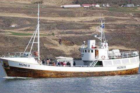 Hollvinir Húna II