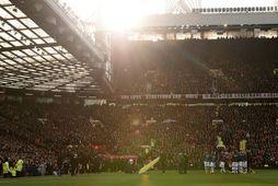 Um 900 manns starfar hjá Manchester United, auk leikmanna og þjálfara.