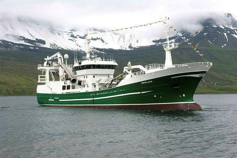 Landar nú 1.000 tonnum af makríl á Fáskrúðsfirði.