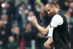 Giorgio Chiellini hefur leikið með Juventus frá árinu 2005 og er fyrirliði liðsins.