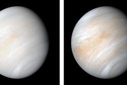 Myndir af Venusi sem voru teknar af könnunarfarinu Mariner 10.